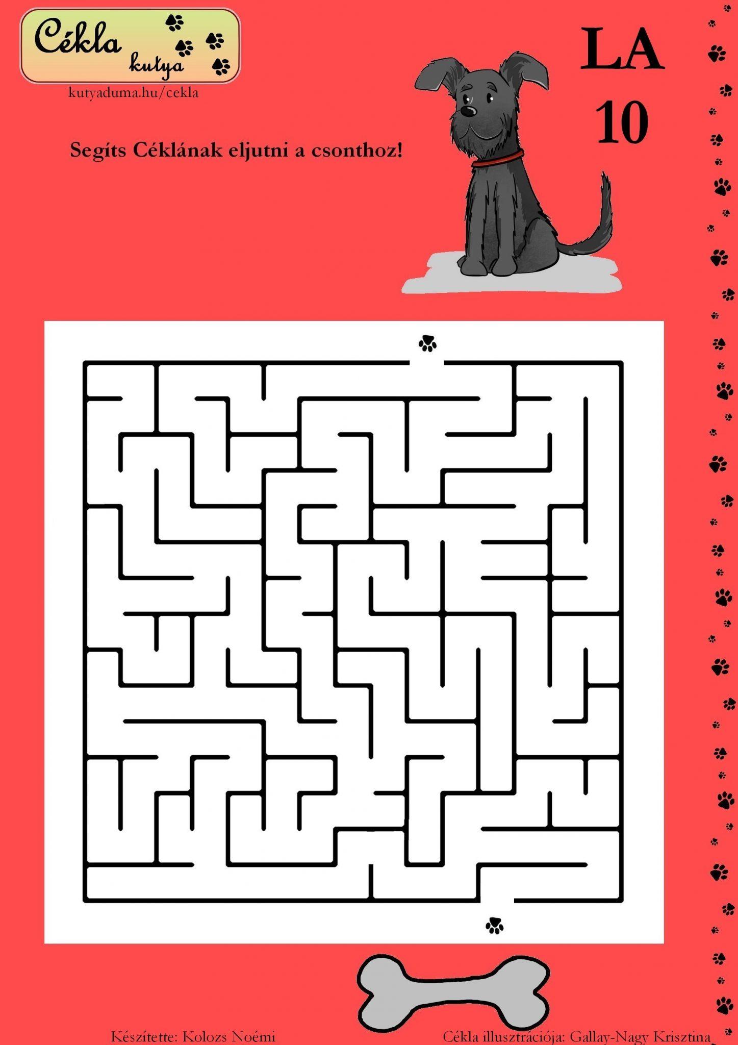 labirintus-10