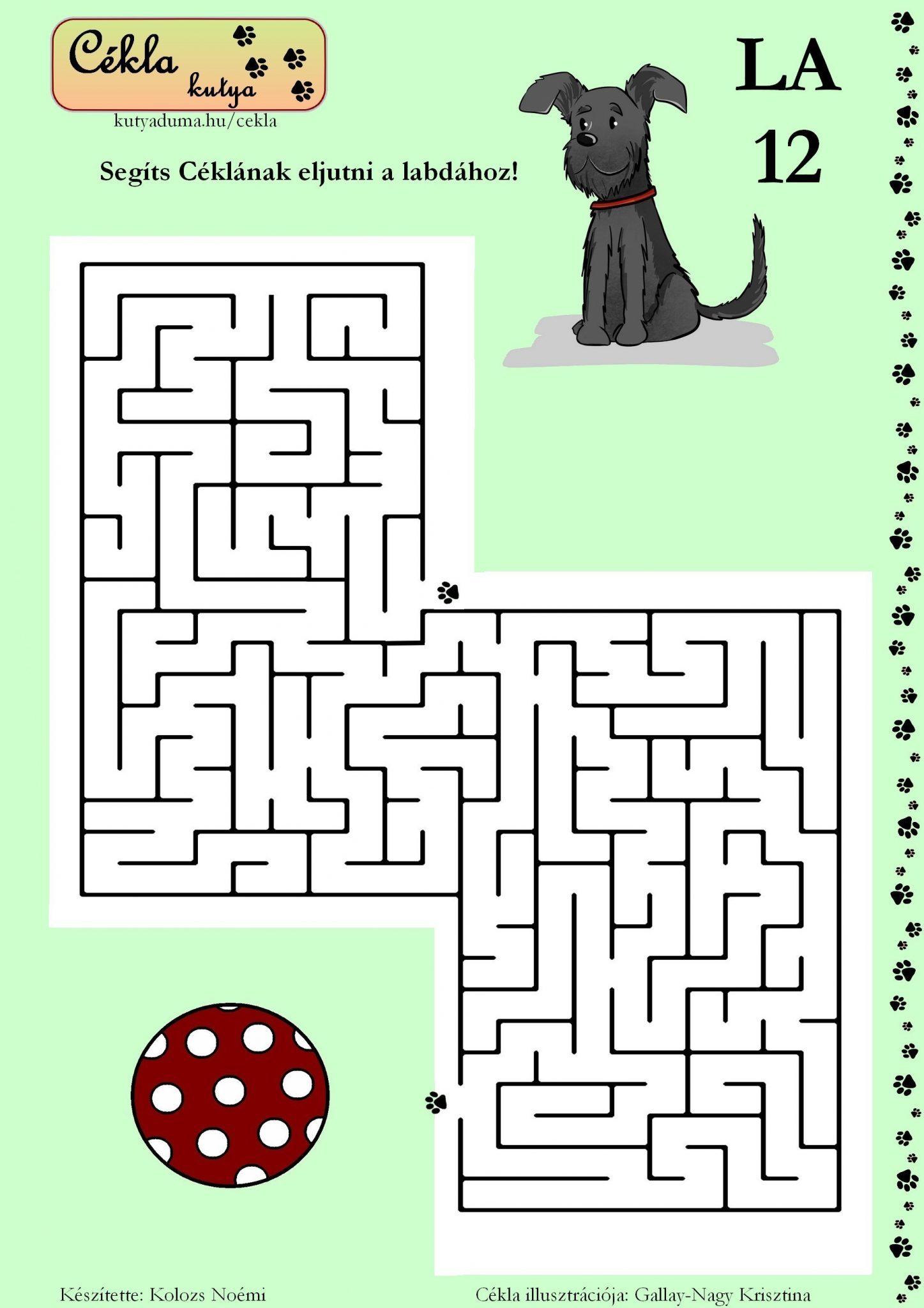 labirintus-12