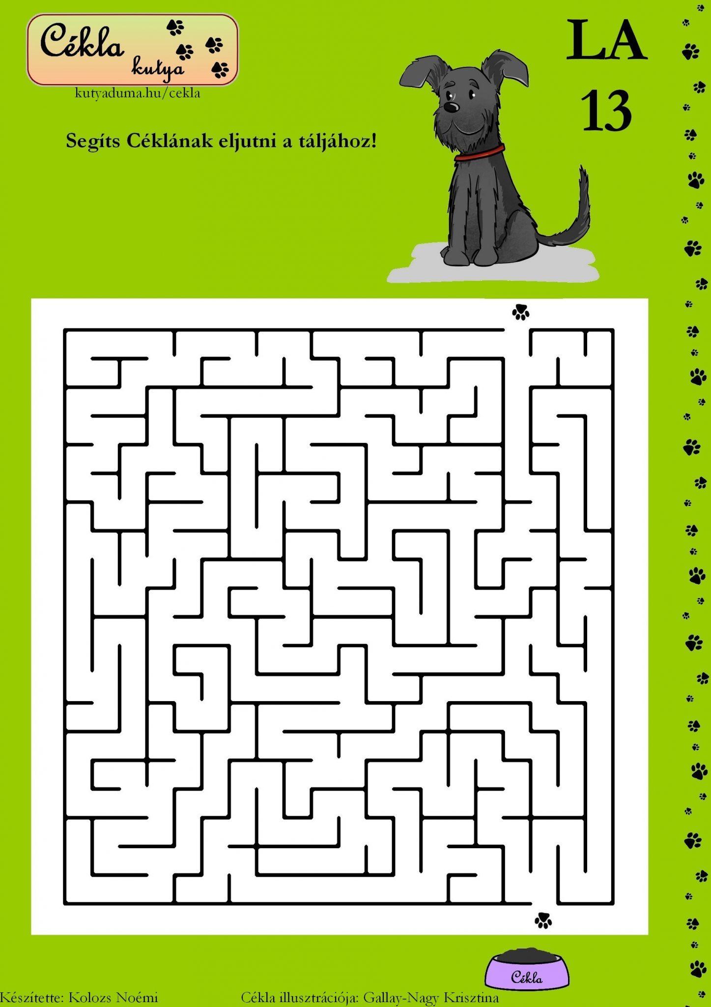 labirintus-13