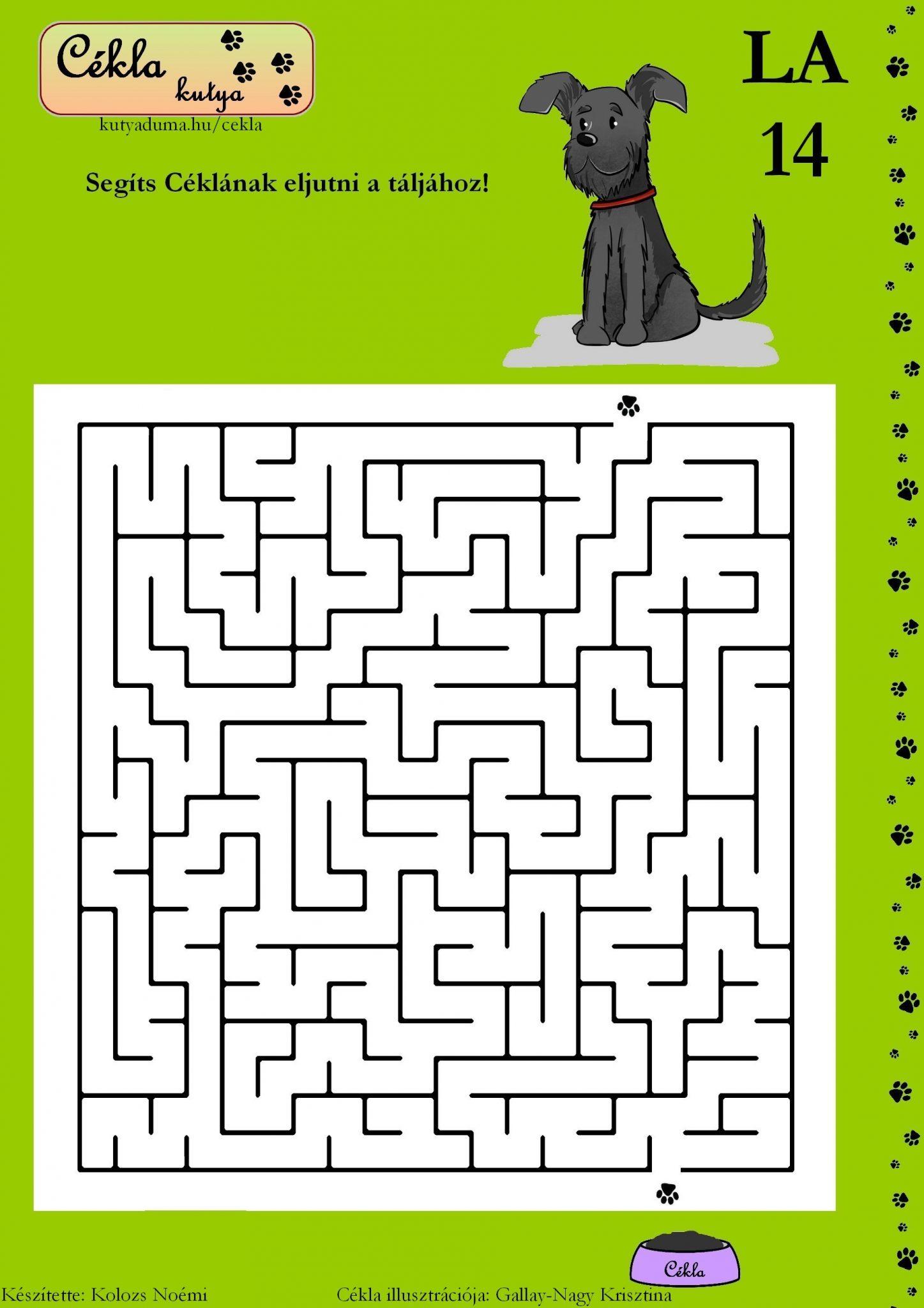 labirintus-14