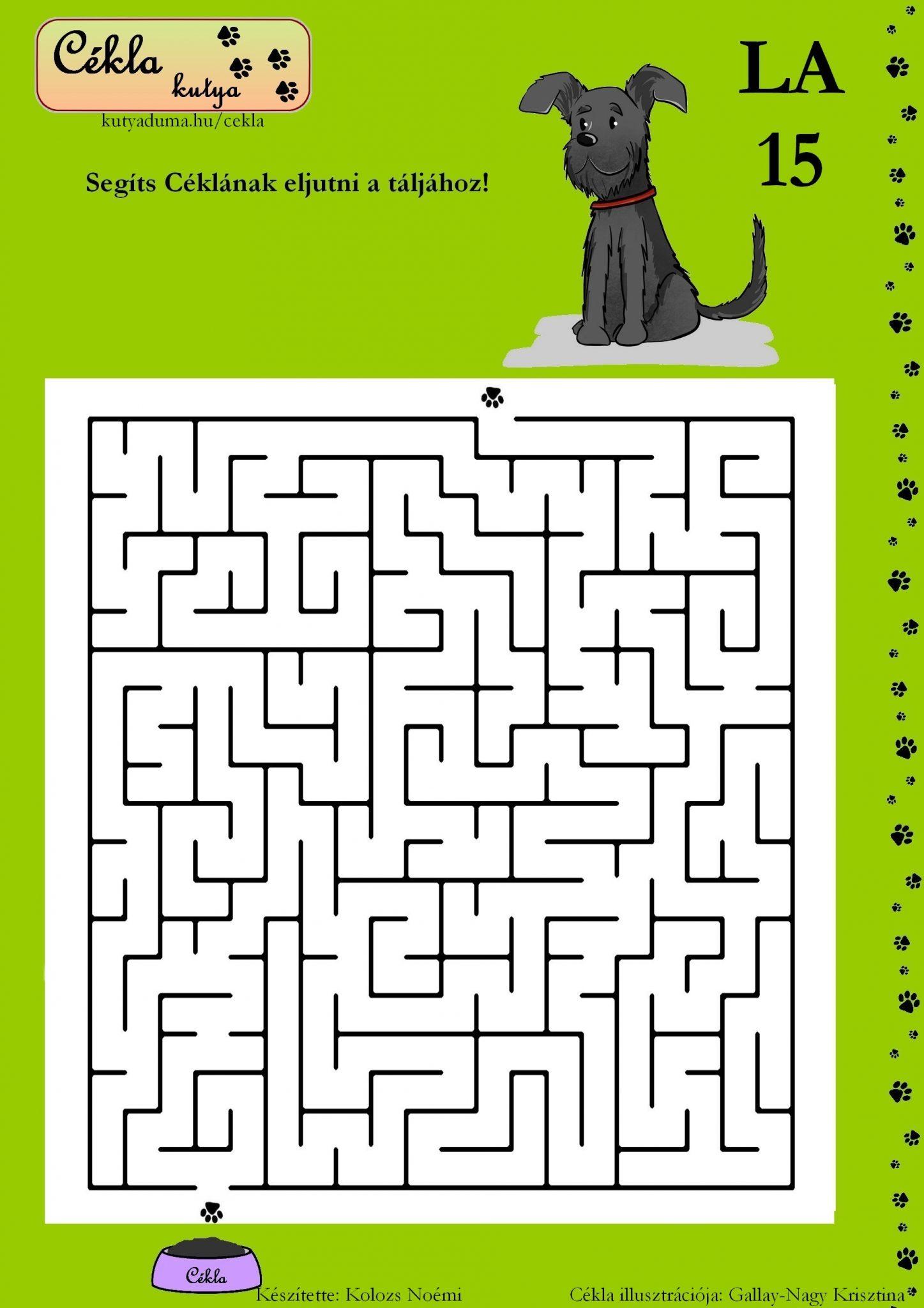 labirintus-15