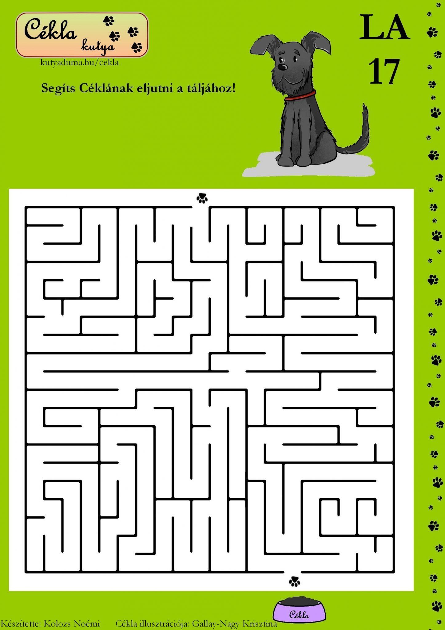 labirintus-17