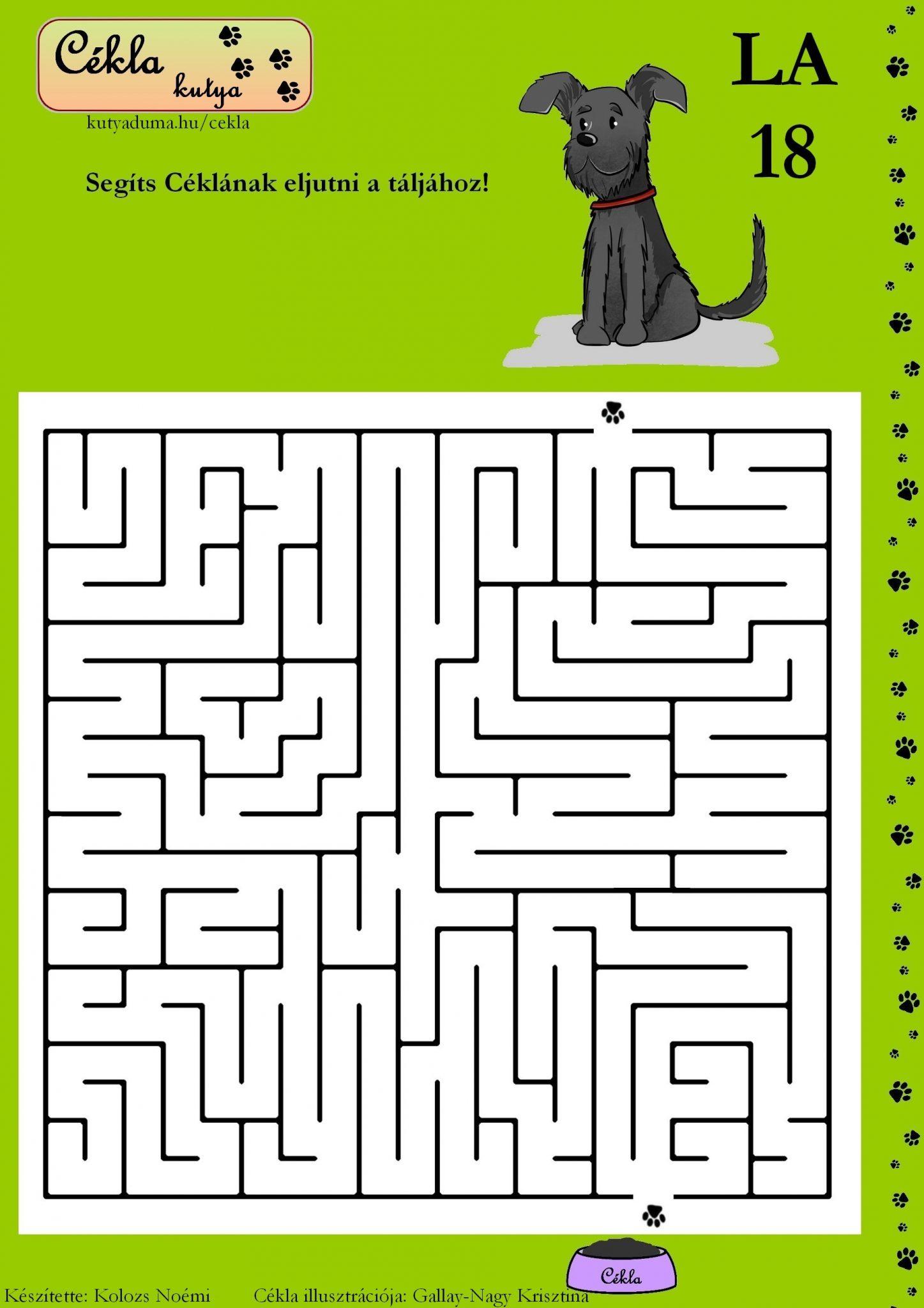labirintus-18