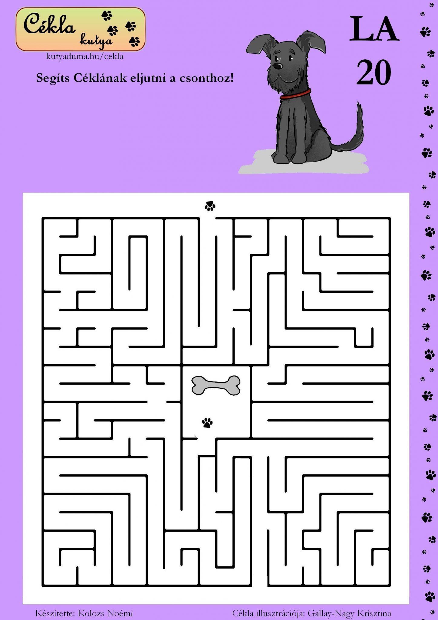 labirintus-20