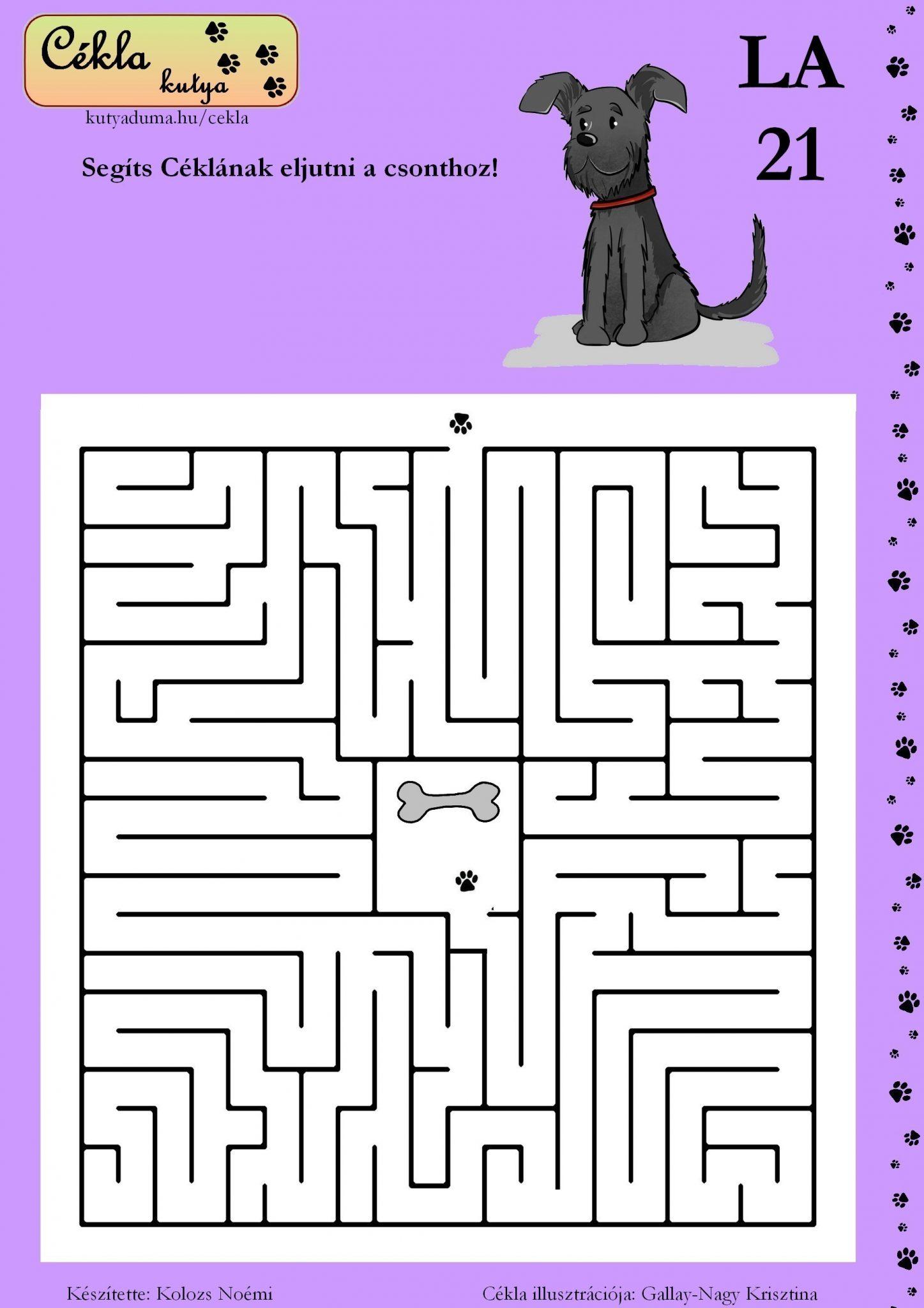 labirintus-21