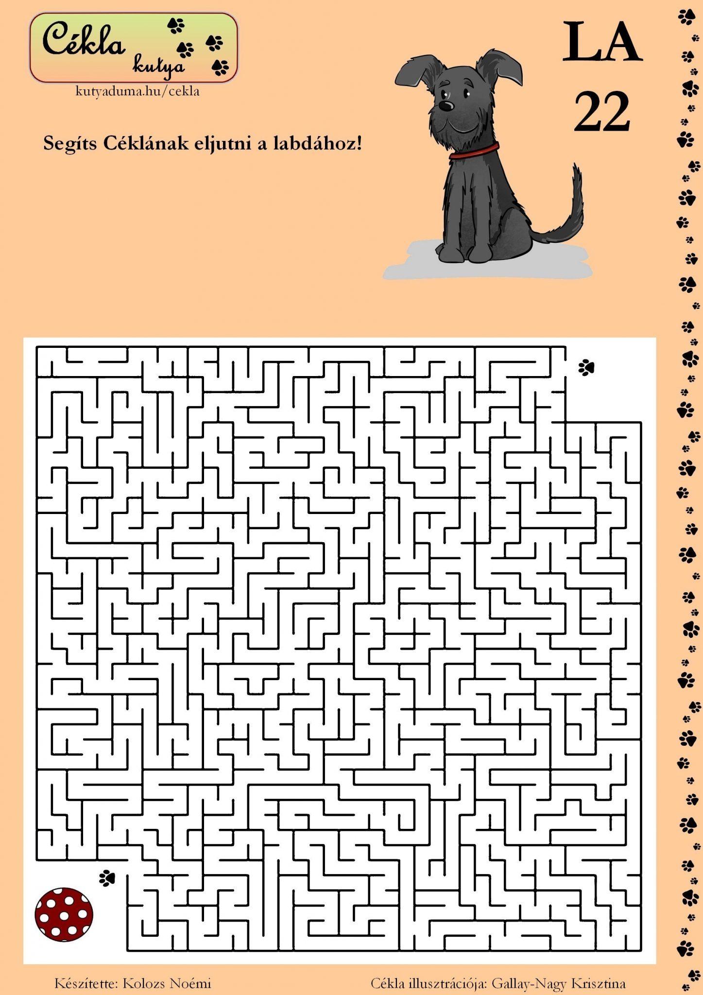 labirintus-22