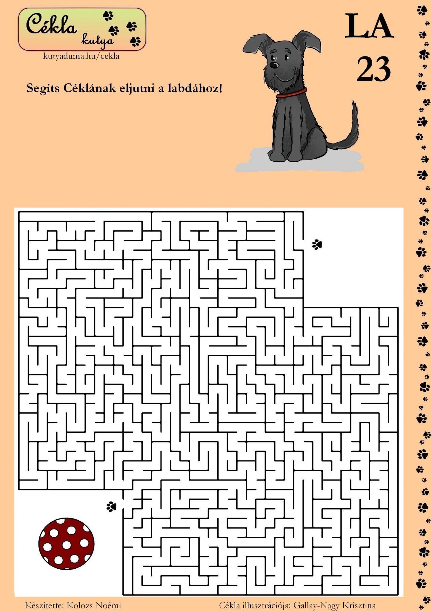labirintus-23