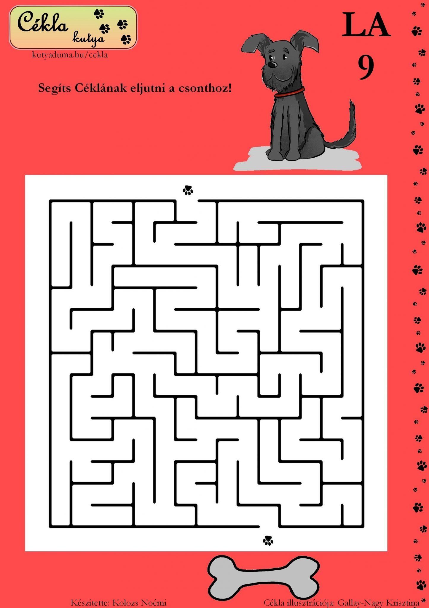 labirintus-9